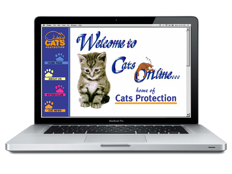 Cats Protection Website by InForm Web Design - BAFTA UK Web Award Winning Site
