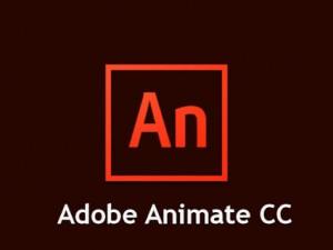 Adobe Animate CC Lancashire | InForm Web Design, Buckshaw Village, Chorley, Lancashire
